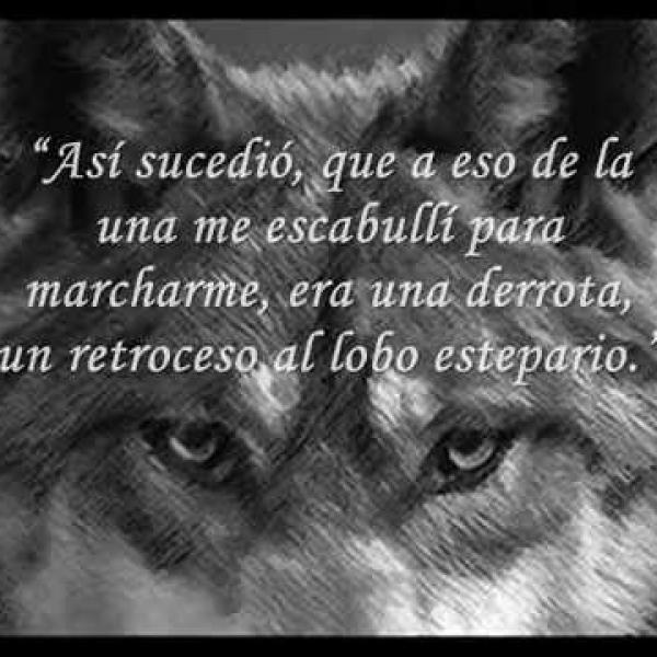 el lobo estepario
